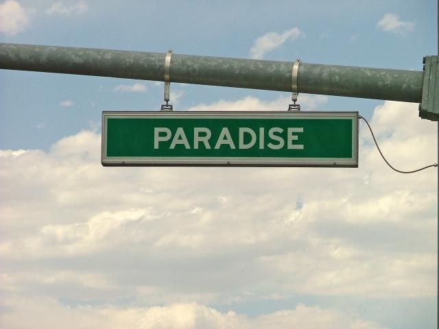 paradise-road-1445232 (1) copy